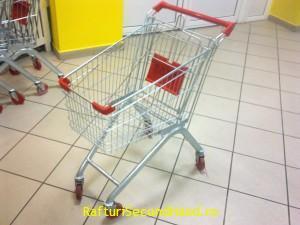 carucior de magazin
