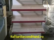 raft paine pt magazine modul 1m